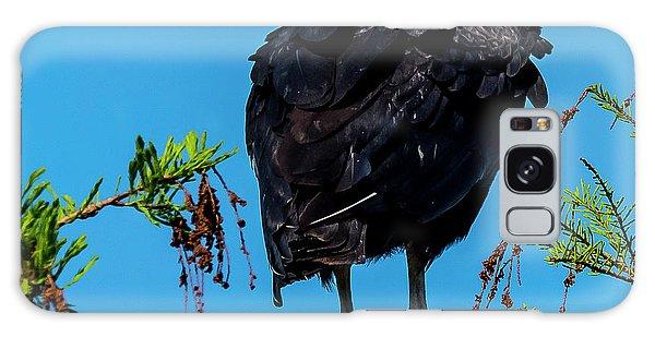 Black Vulture Galaxy Case