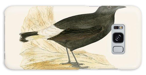 Song Bird Galaxy Case - Black Wheatear by English School