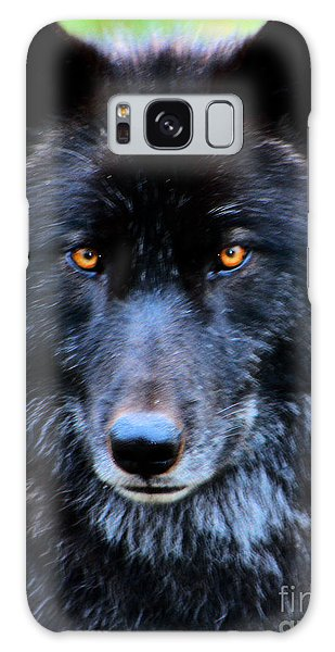 Black Wolf Galaxy Case by Nick Gustafson