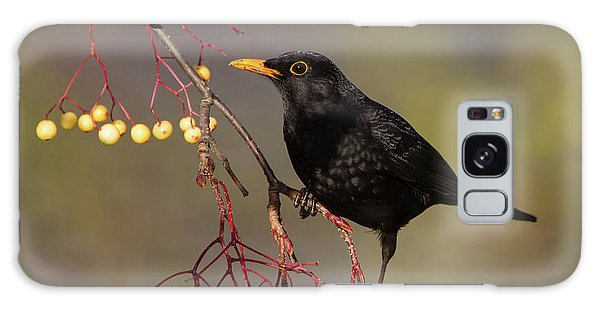 Blackbird Yellow Berries Galaxy Case