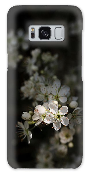 Blackthorn Flowers Galaxy Case