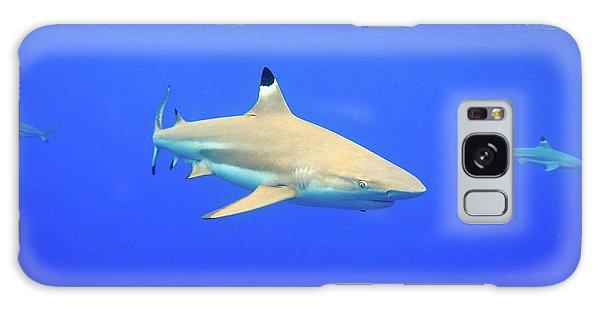 Blacktip Reef Shark Galaxy Case