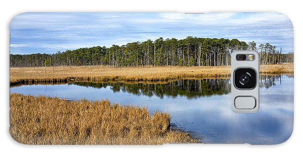 Blackwater National Wildlife Refuge In Maryland Galaxy Case by Brendan Reals