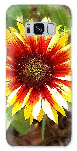 Blanketflower Galaxy Case