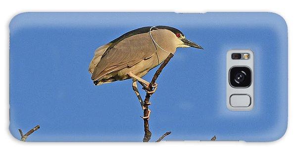 Black-crowned Night Heron Galaxy Case