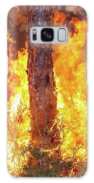 Blazing Pine Galaxy Case