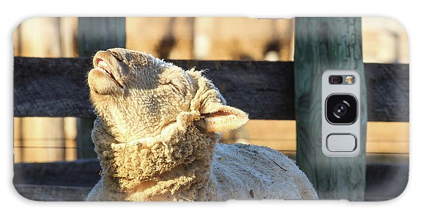 Bleating Sheep Galaxy Case