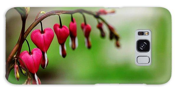Bleeding Hearts Flower Of Romance Galaxy Case by Debbie Oppermann