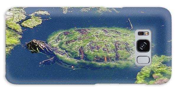 Blending In Turtle Galaxy Case