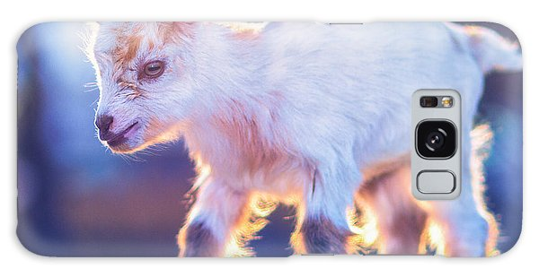 Little Baby Goat Sunset Galaxy Case