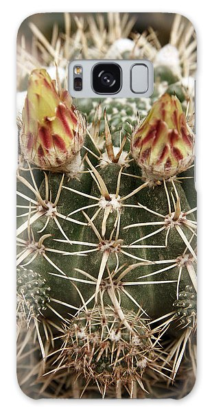 Blooming Cactus1 Galaxy Case