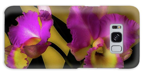 Blooming Cattleya Orchids Galaxy Case
