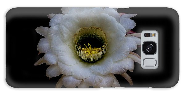 Blooming Echinopsis Candicans Galaxy Case