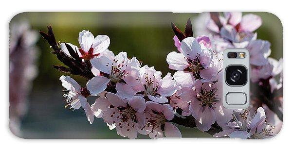 Blooming Peach Tree Galaxy Case