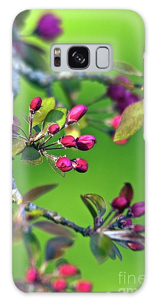 Blooming Spring Poetry Galaxy Case