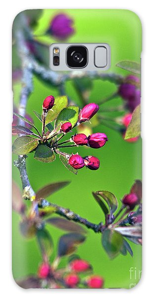 Blooming Spring Poetry Galaxy Case
