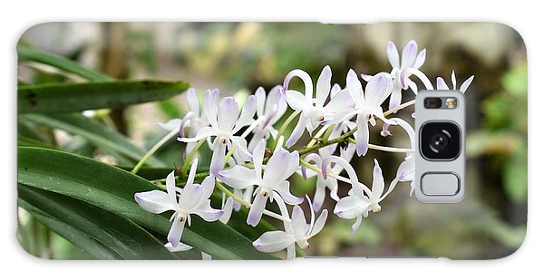 Blooming White Flower Spike Galaxy Case
