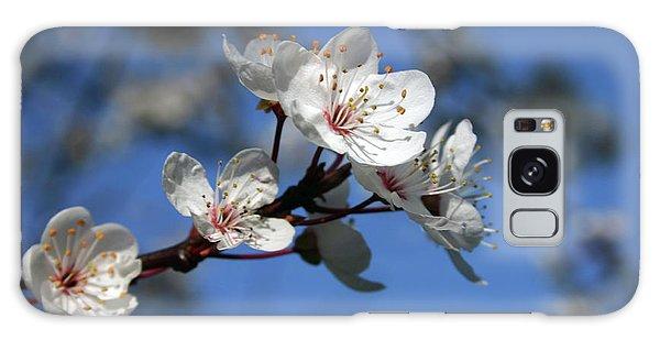 Blossom Galaxy Case by Martina Fagan