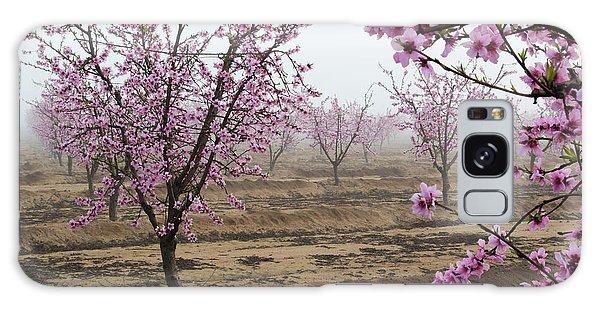 Blossom Trail Galaxy Case