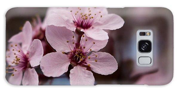 Blossom Trio Galaxy Case