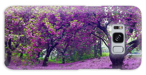Blossoms In Central Park Galaxy Case