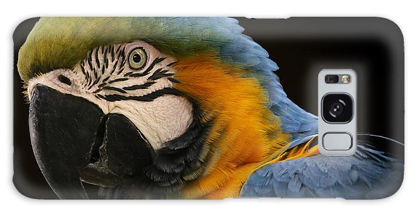Blue And Gold Macaw Galaxy Case