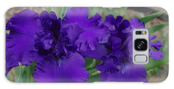 Blue Bearded Irises Galaxy Case by Robyn Stacey