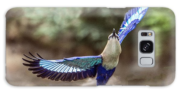Blue-bellied Roller In Flight Galaxy Case