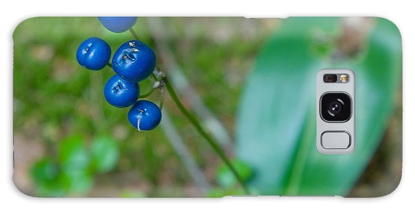Blue Berries Galaxy Case