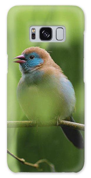 Blue Bird Chirping Galaxy Case