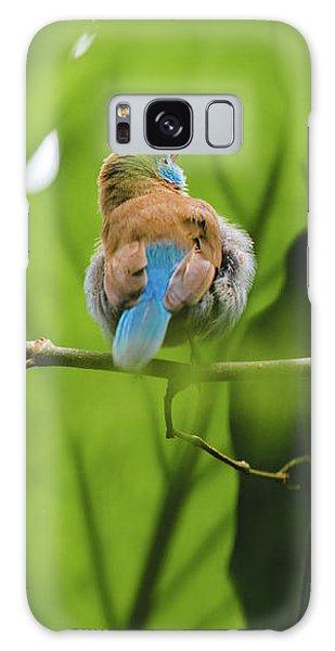 Blue Bird Has An Itch Galaxy Case