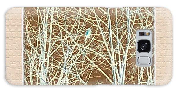 Blue Bird In Winter Tree Galaxy Case by Felipe Adan Lerma