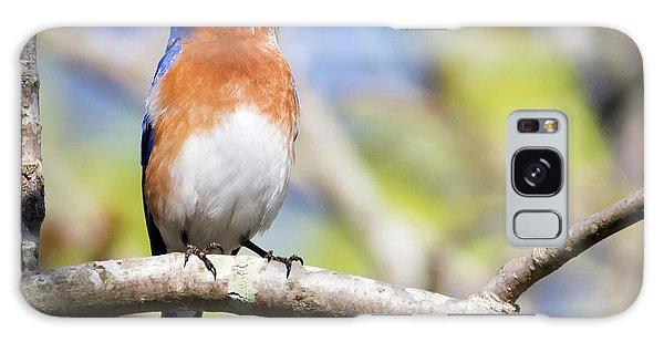 Galaxy Case featuring the photograph Blue Bird by Ricky L Jones