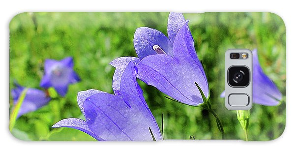 Hairbell - Campanula Rotundifolia Galaxy Case by Blair Wainman