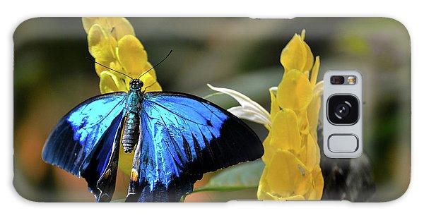 Blue Beauty Butterfly Galaxy Case