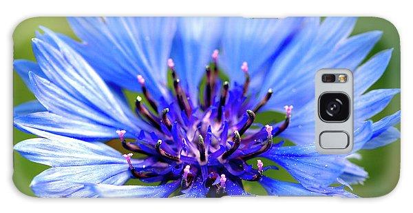 Blue Cornflower Galaxy Case