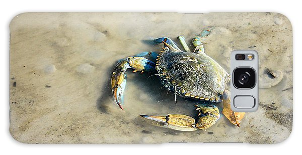 Galaxy Case featuring the photograph Blue Crab by Sandy Adams