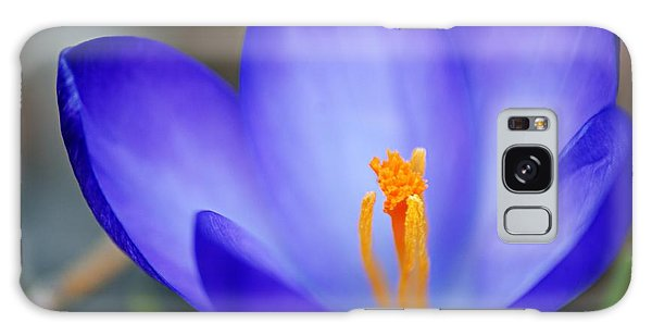 Blue Crocus Galaxy Case