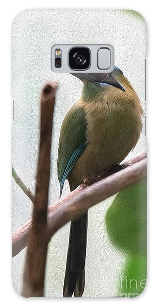 Blue-crowned Motmot Oil Galaxy Case