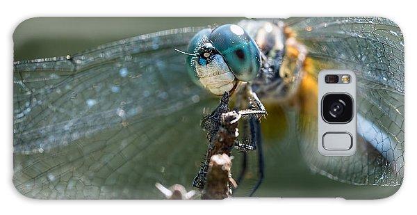 Blue Dasher Dragonfly Galaxy Case