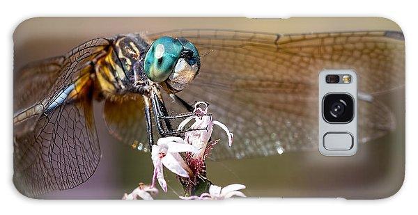 Blue Dasher Dragonfly Resting Galaxy Case