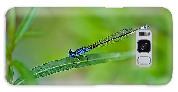 New Leaf Galaxy Case - Blue Dragonfly by Az Jackson