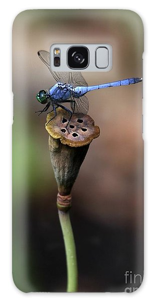 Blue Dragonfly Dancer Galaxy Case