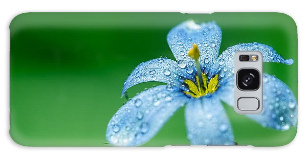 Blue Eyed Grass Flower Galaxy Case