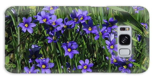 Blue Eyed Grass Galaxy Case