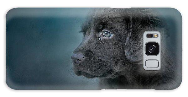 Blue Eyed Puppy Galaxy Case