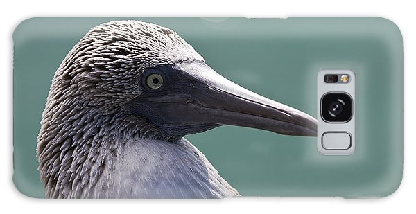 Blue Footed Booby II Galaxy Case