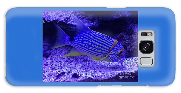 Blue Fish Groupie Galaxy Case by Richard W Linford