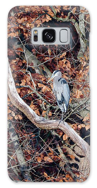 Blue Heron In Tree Galaxy Case