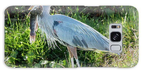 Blue Heron With Fish Galaxy Case